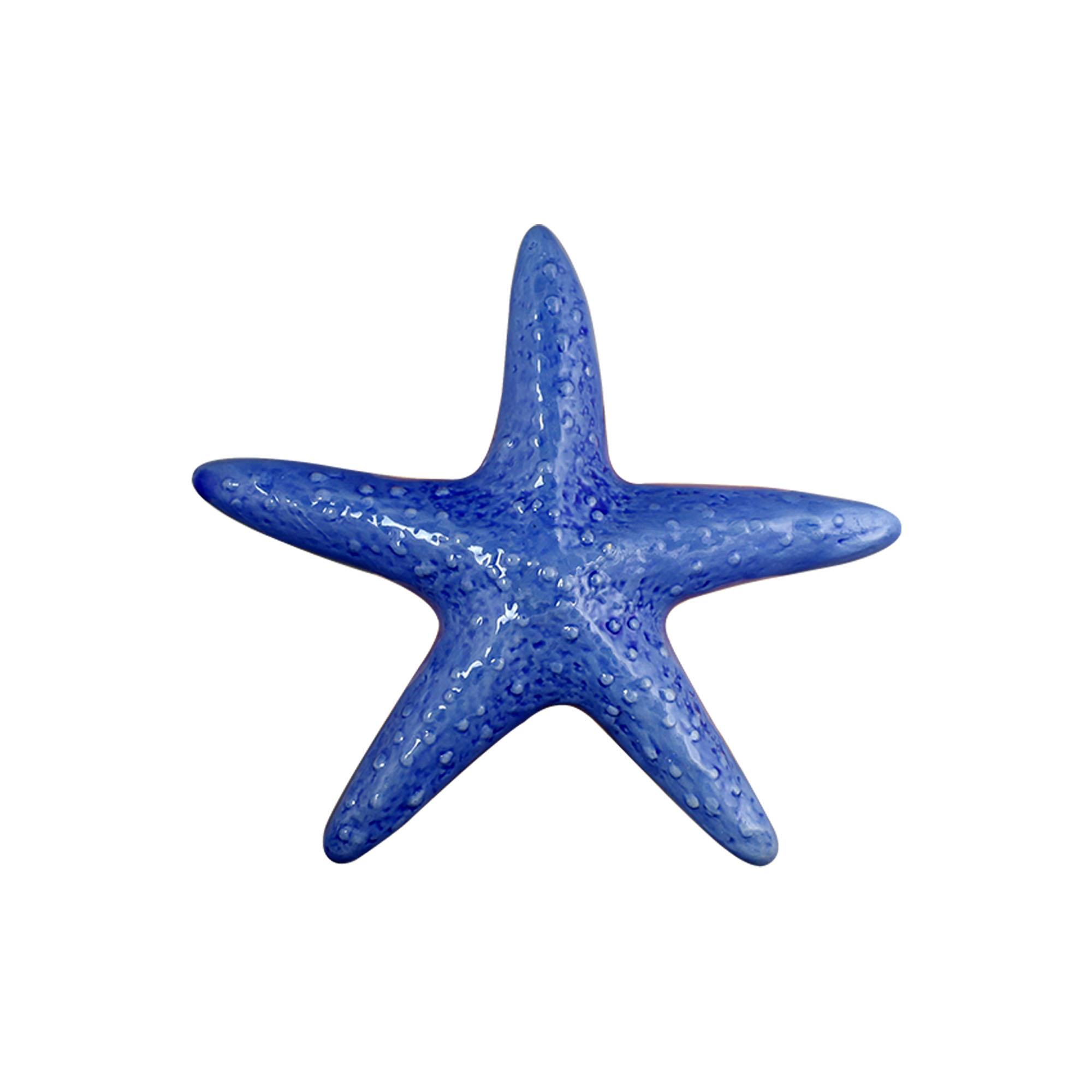 Estrela do Mar Deitada