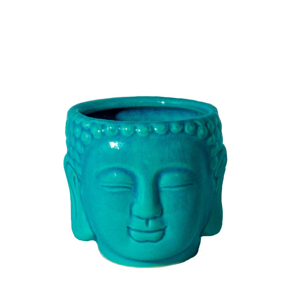 Cachepo suculenta Buda