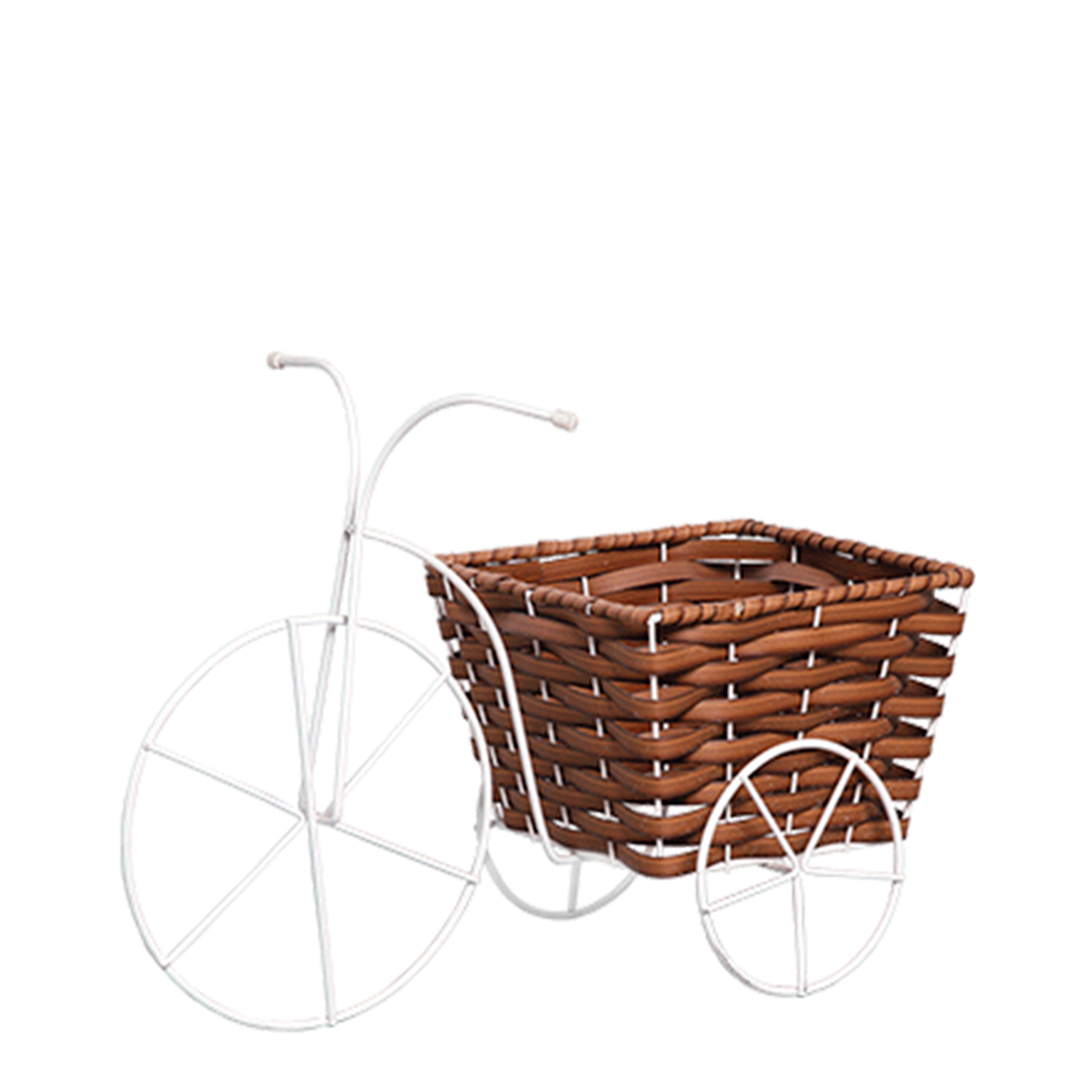 Bicicleta Grande Vime