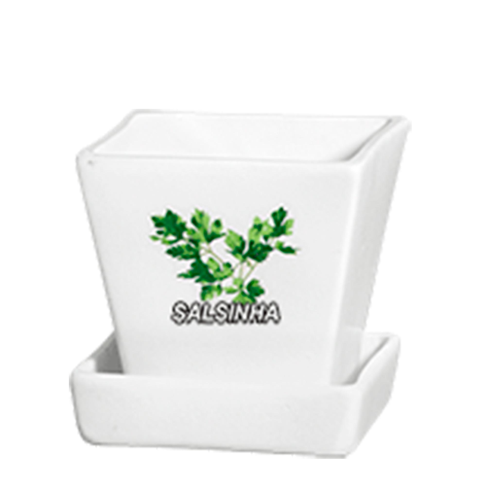 Cachepo Conico Salsinha Tempero